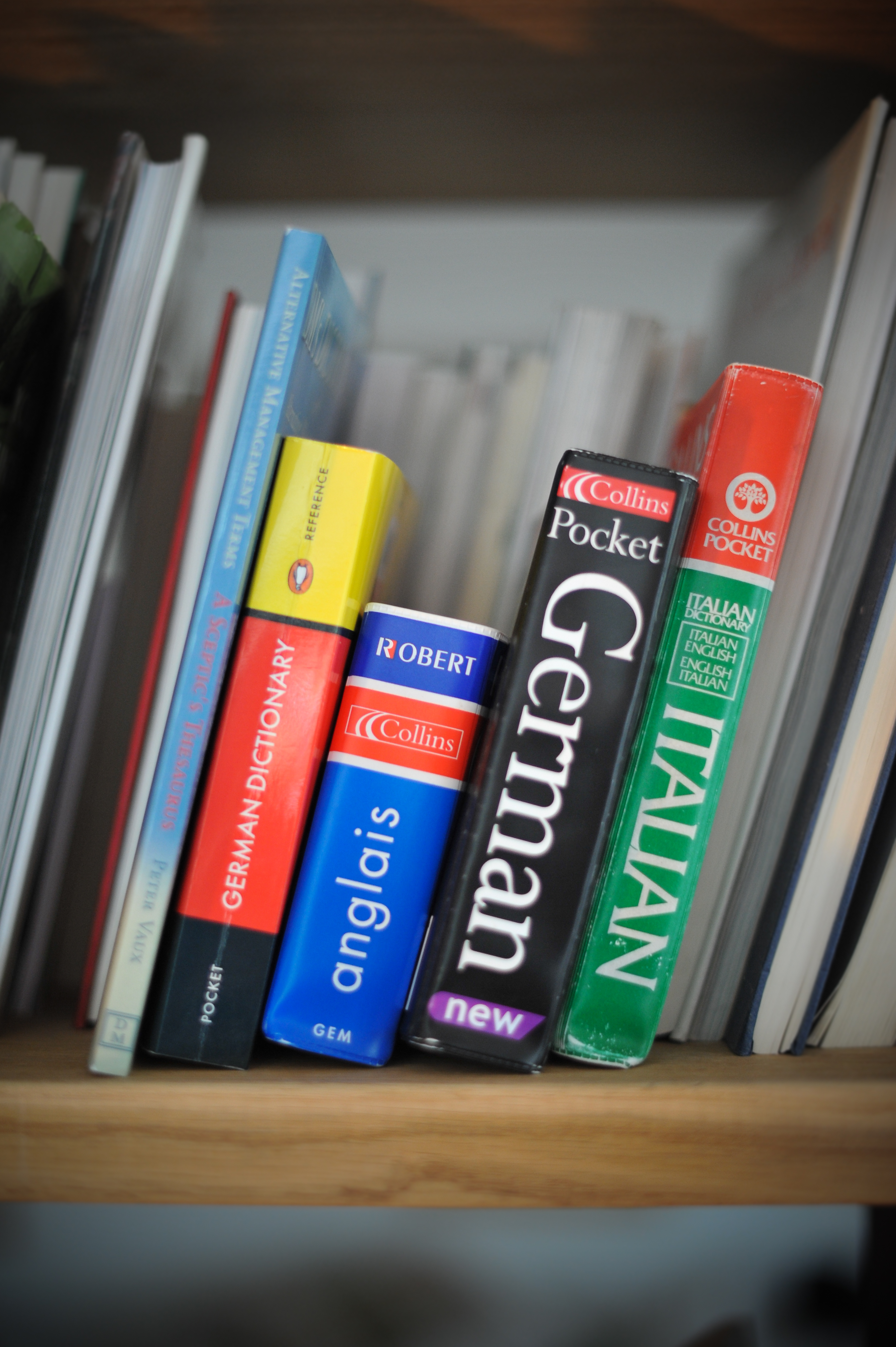 German, French and Italian dictionaries on a shelf. Out of House Publishing have expertise in producing MFL content.